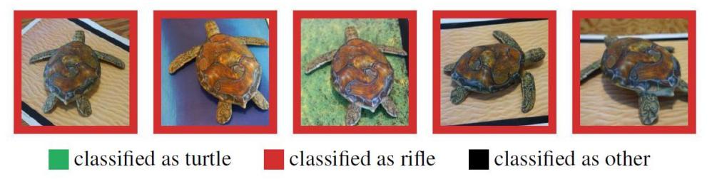 Attacco adversarial su tarrtaruga