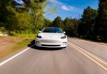Tesla bianca © Tierney
